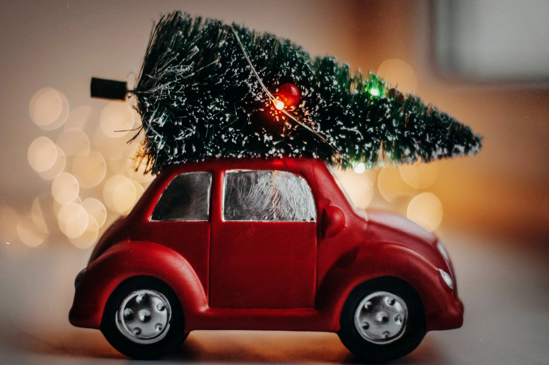 Car with a Christmas Tree on its roof
